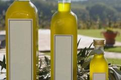 olive_harvesting_bottles
