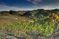tuscan_cuisine_1