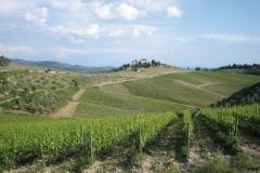 tuscany_spring_CampagnaTasting