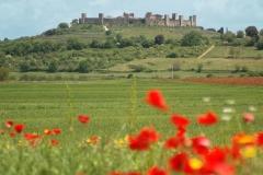 tuscany_spring_monteriggioni