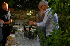 vineyard_8